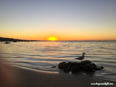 Benjamin's Sunset 04.03.2018 1 Blog