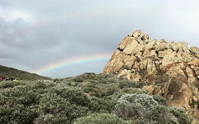 Rainbows and Teardrops